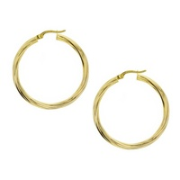 9ct Yellow Gold Silver Filled Twist Hoops image